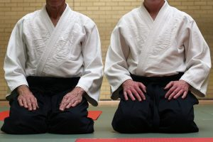 Taidokan (Summer) 2nd of 4 Special training seminars 2019 @ Milton Keynes Dojo